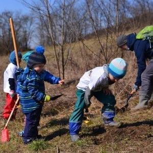 Grădina pădure – proiect educațional